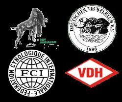Mitglied in folgenden Verbänden: